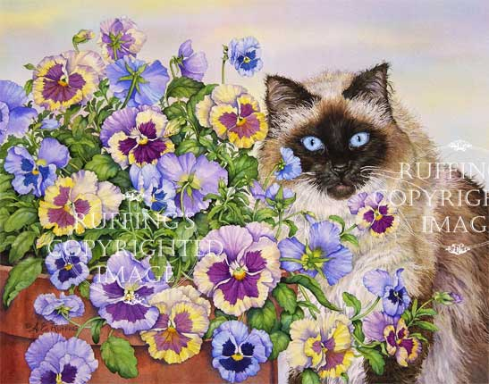 Ragdoll and Pansies fine art print by  A E Ruffing