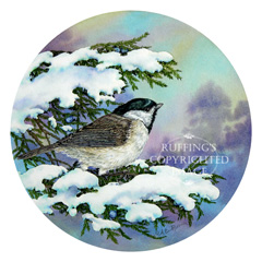 "AER76 ""Carolina Chickadee and Eastern Red Cedar"" by A E Ruffing"